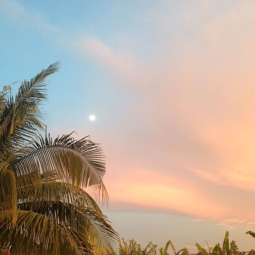 The moon shows up. Sky Moon Nature Dusk Greatness Of God
