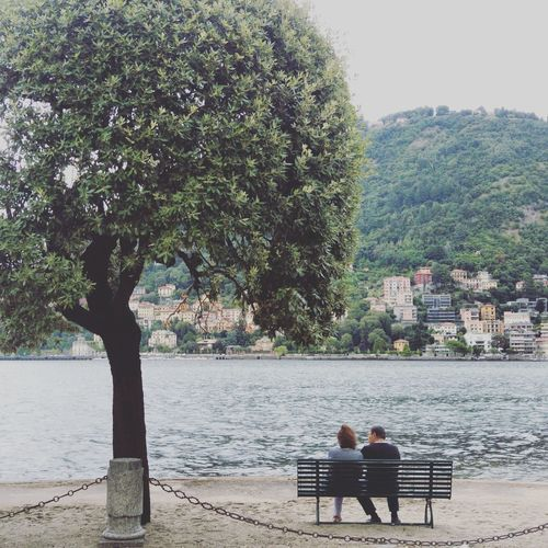 Tree Two People Sitting Relaxation Couple - Relationship Lake Lake View Lake Como Como Lake,Italy Como City Italy Italy❤️ Italia Painting EyeEmNewHere