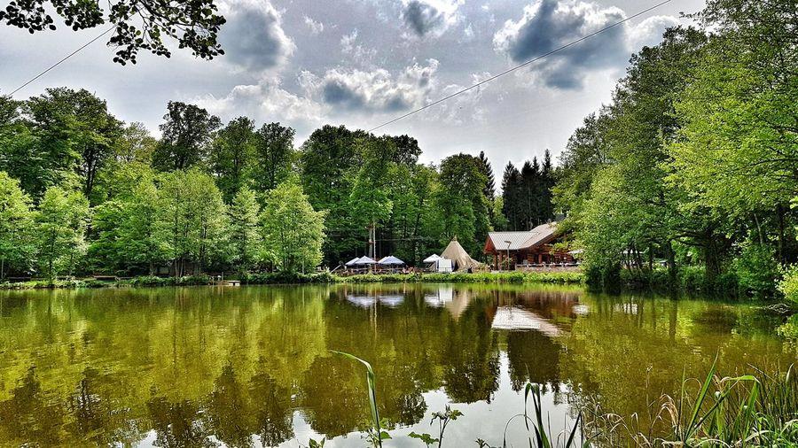 Jägersburger Weiher Saarland Homburg Weiher Wasser Tree Water Reflection Lake Sky