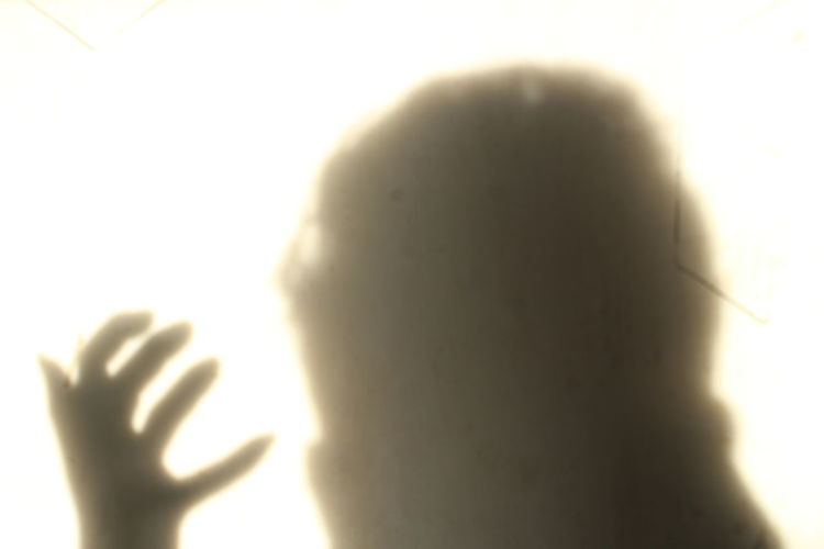 Close-up of hands against sunlight