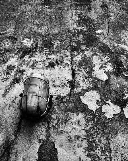 Photo Photographer Photograph Photograpy Instalike Instaphoto Instagood Portrait Instaportrait Foto Fotografia Instafoto Instafotografia Instagood Pretoebranco Blackandwhite Instablackandwhite Light