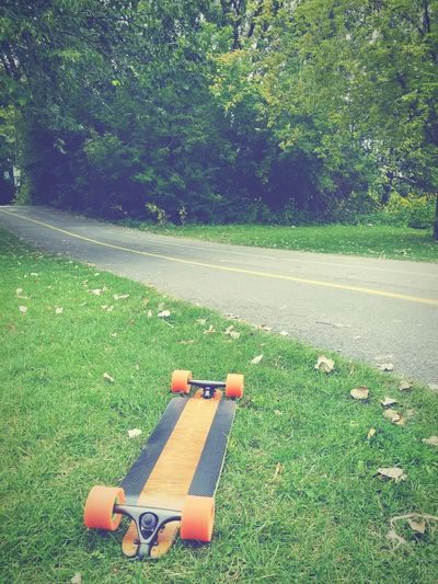 Lasy days of summer. Skateboard Montréal