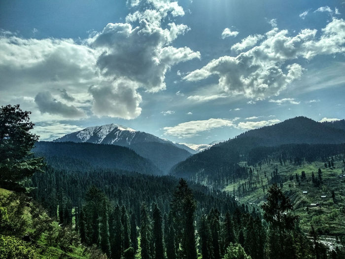 Summer place. Siamdiscovery Photography Photooftheday Getty Getty Images EyeEm Best Shots Mobilephotography Kashmir Kashmirdiaries IndianOccupiedKashmir Nature Summer Exploratorium Tree Mountain Forest Tea Crop Pinaceae Pine Tree Winter Sky Cloud - Sky Landscape