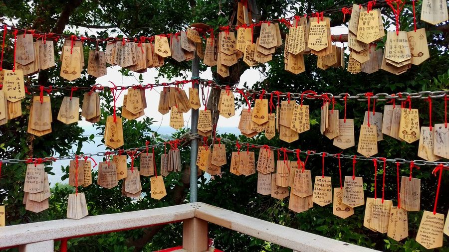 Wishing Cards Hanging No People Large Group Of Objects Abundance Outdoors Variation Day Tree Close-up