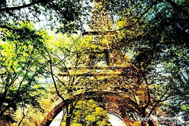 Paris La Tour Effel Effel Tower Photo