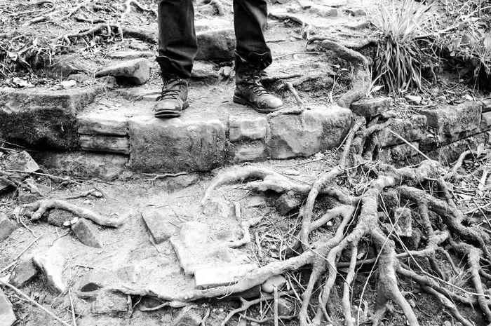 Human Leg Low Section Outdoors Day Human Body Part Sand Real People One Person Close-up People Break The Mold Monochrome Monochrome Landscape Black & White Man Forest Magical Countryside Tranquil Scene Roots Tree Roots  Scenics Tranquility Nature