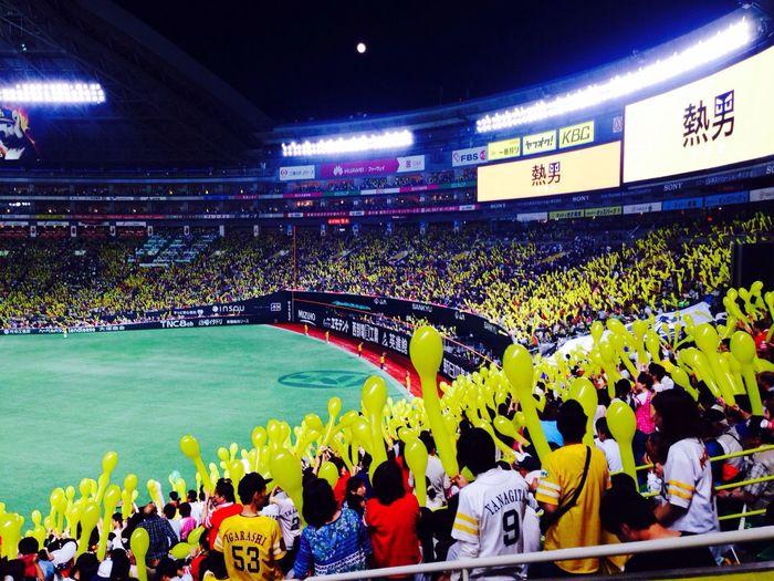 baseball Game watch Manyballoon manypeople Win