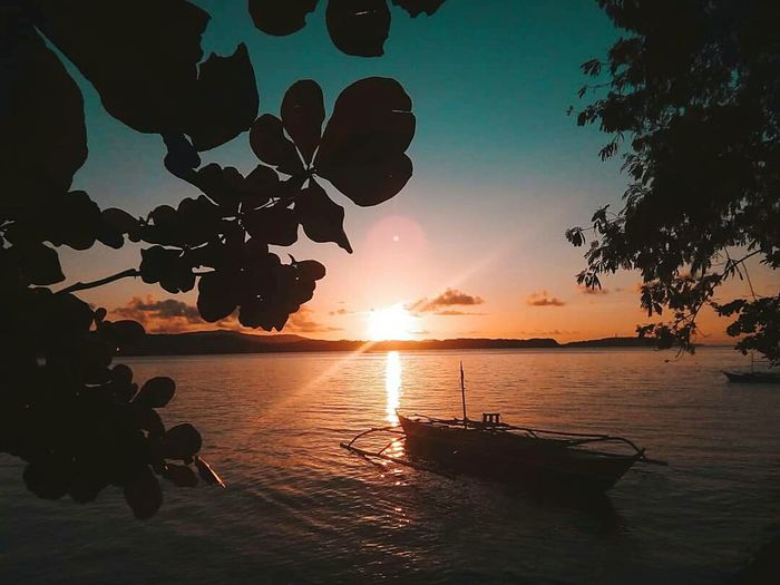 Sun Rise ☀ Sunlight Sunlight And Shadow Sunrise Beach Sea Leaves Branch Boat Landscape Silhouette Orange Color Orange Sky Cloud - Sky Check This Out Sky Tree Water Sea Sunset Beach Silhouette Summer Sun Reflection Blue Shore Seascape EyeEmNewHere