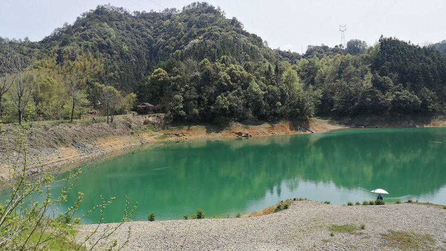Longchuanwan EyeEm Selects Tree Water Lake Beach Pinaceae Forest Sky Landscape Dam Calm