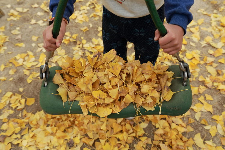 Midsection of child standing by swing with autumn leaves