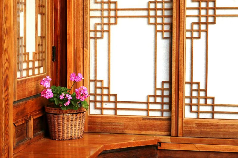 Korean Korea Traditional Tradition Flower Architecture Flower Head No People Outdoors Day Freshness Built Structure Daytime Dayshots Calm Traditional House Koreanstyle Korean Architecture Asian Culture Asianstyle