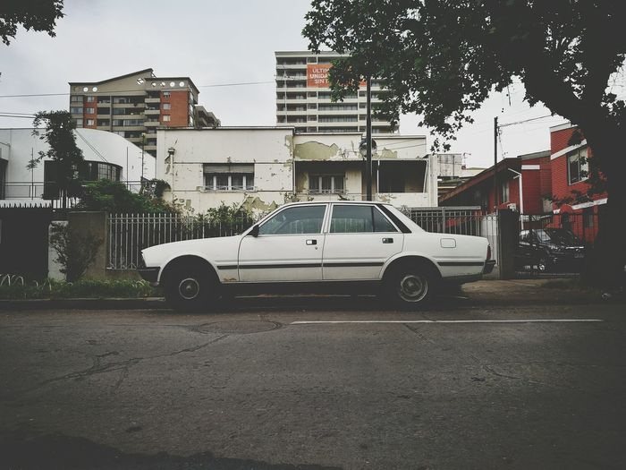 Peugeot Peugeot 505 Vintage Cars Vintage Photo Coches Clasicos Coches Antiguos, Car