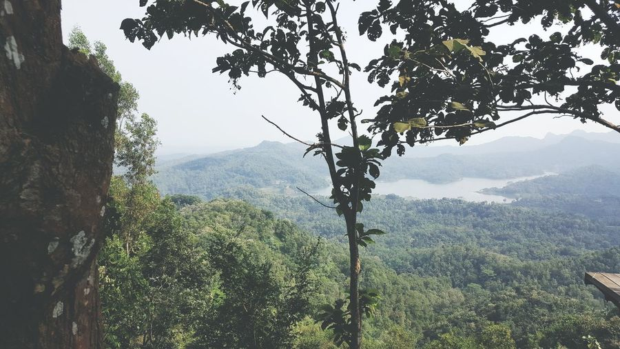 Beautiful view Kalibiru Jungle View Hills Lake View First Eyeem Photo