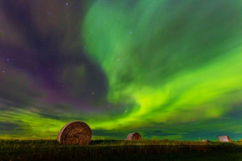 Aurora Aurora Borealis Auroraborealis Aurora Chasing Hay Bales Night Photography Northern Lights NorthernLights Skyisonfire Skyporn Hanging Out