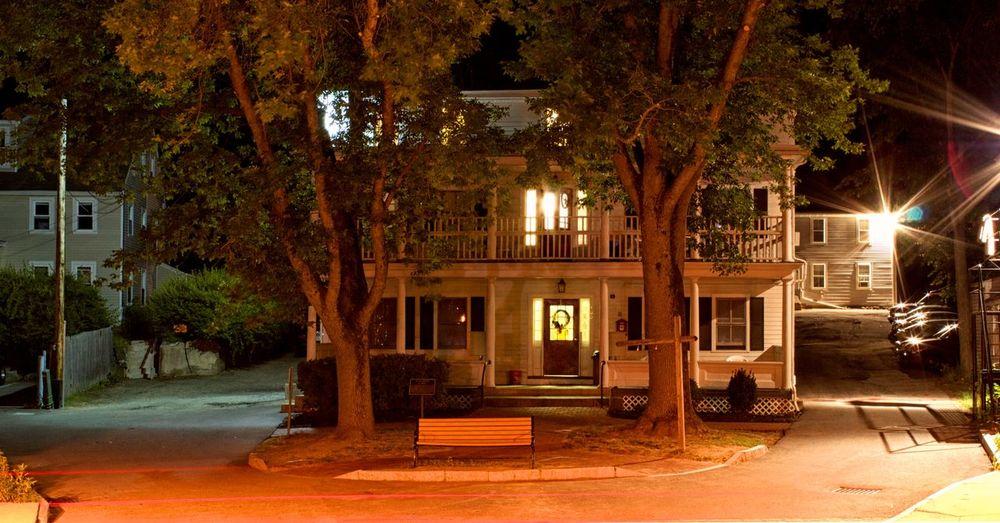 Bench Empty Illuminated No People Outdoors Tree