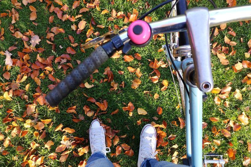Bike Biker