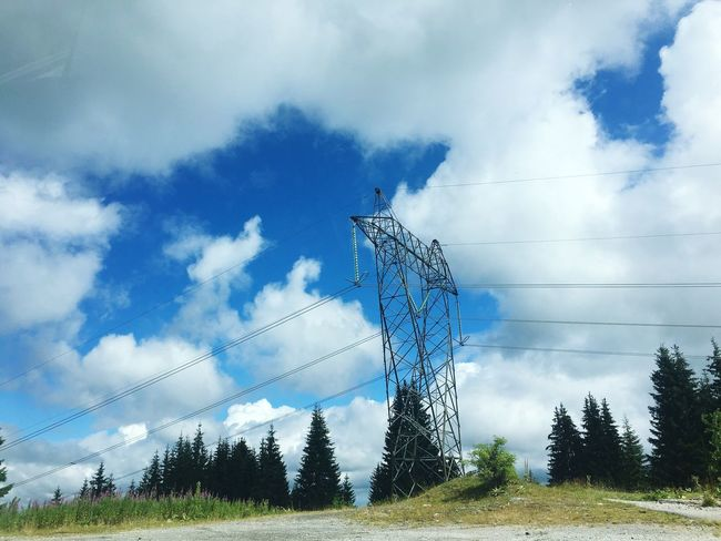 Cloud - Sky Tree Sky Cable Electricity  Day Electricity Pylon No People Low Angle View Fuel And Power Generation Connection Outdoors Technology Field Landscape Nature Growth
