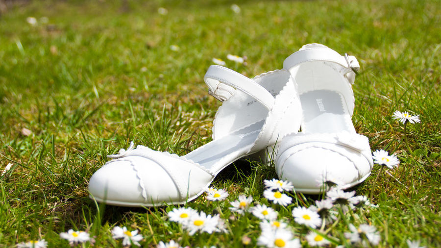 Close-up of white sandals by daisy flowers on grass