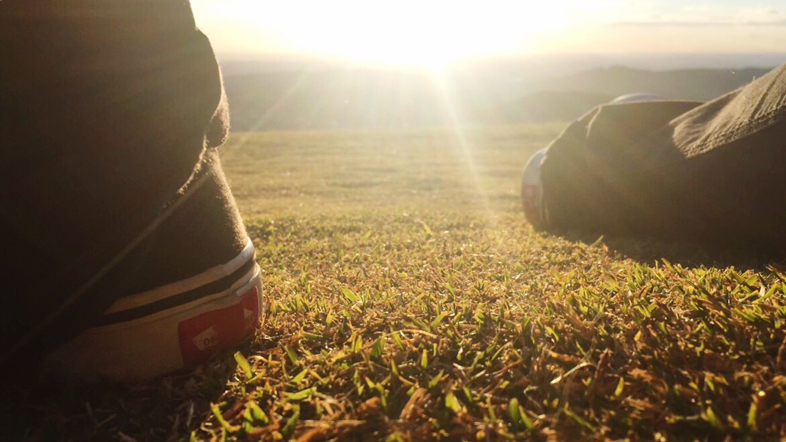 lens flare, sunlight, sunbeam, field, grass, sun, day, no people, outdoors, close-up, nature, sky