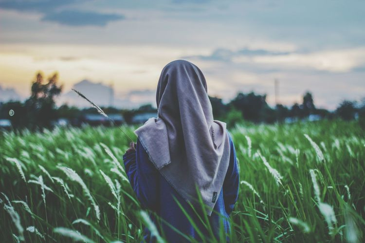 Rear view of young woman wearing hijab standing amidst plants against sky in farm during sunset