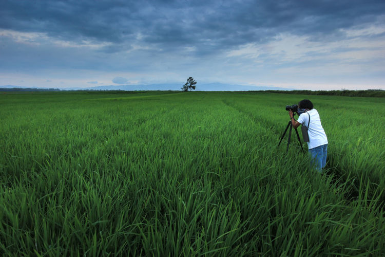 Rear view of man photographing on field against sky