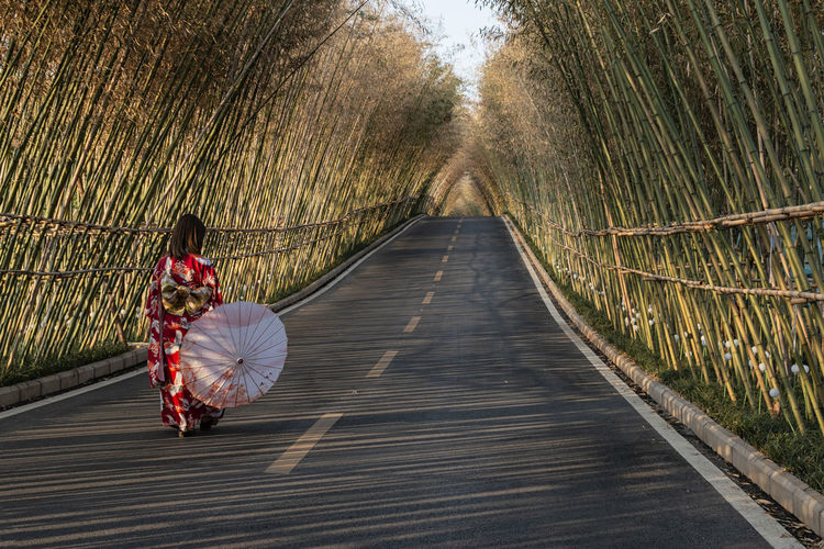 Rear view of woman on footpath amidst trees
