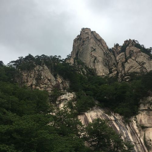 Plant Sky Tree Rock Beauty In Nature Nature No People Day Rock - Object Mountain Outdoors Rock Formation