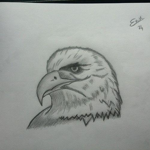 Eagle... Draw Drawing MyDrawing Aquila Eagle Eye Eagles Disegni 2B 6b Follow4follow