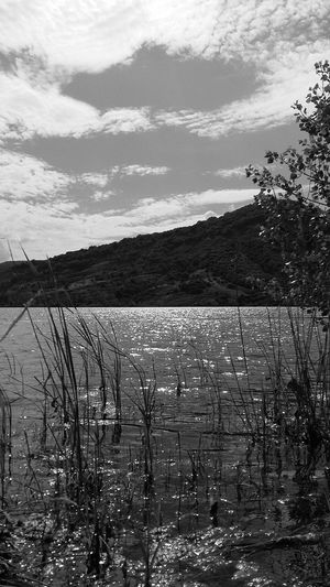 Black And White Salagou Lake South Of France Wild Water Sun