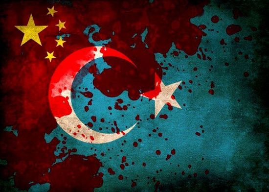 DoğuTürkistan StopTerorisminChina Freedomforeastturkestan