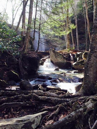 Ohiopyle Cucumber Falls Nature Fall Beauty Water Hiking Outdoors Waterfall