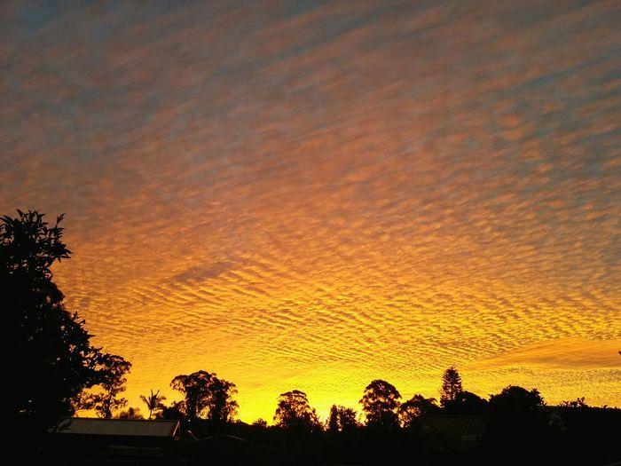 Sunset Sky Amazingcolours Sydney Skyporn Cloudporn Beautiful