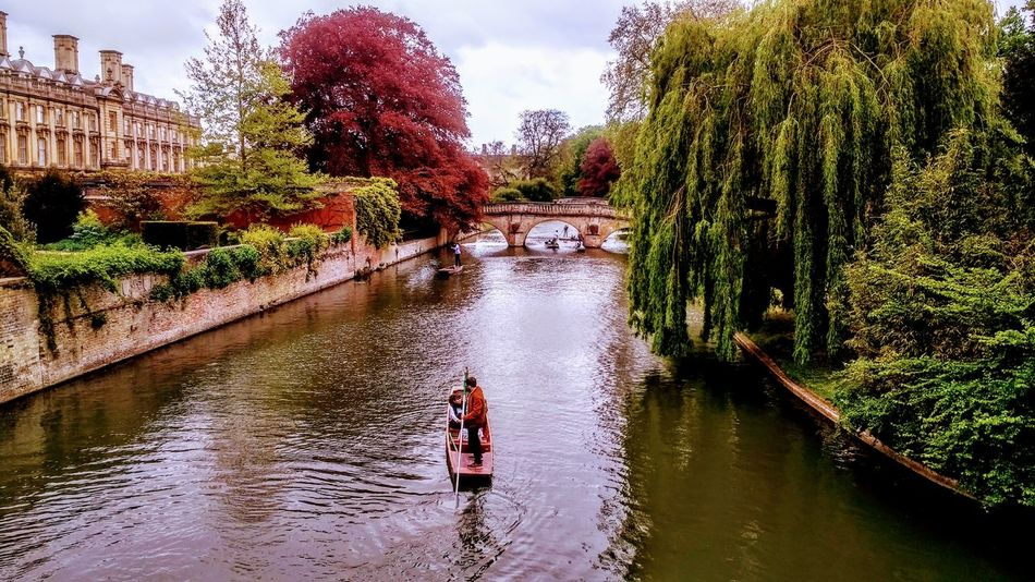 Water Tree Real People Outdoors Day Reflection Childhood Boys Child People Adult Architecture Two People Building Exterior Nature Nature England United Kingdom Cambridge Tourism History Punting On The River Cam River Sunday Treescape Built Structure River Waterfront Leisure Activity Bridge - Man Made Structure