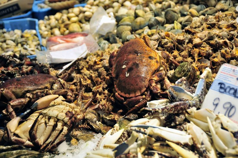 Food Market Food And Drink Retail  For Sale Seafood Crab No People Animal Wellbeing Choice Close-up Freshness Abundance Large Group Of Objects Market Stall Shell Selective Focus Sale Crustacean Fishing Industry