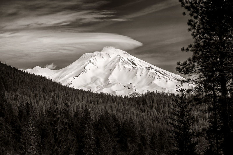 Mt. Shasta, California. Mount Shasta is a potentially active volcano at the southern end of the Cascade Range in Siskiyou County, California. At an elevation of 14,179 feet (4321.8 m), it is the second highest peak in the Cascades and the fifth highest in California. Beauty In Nature Black And White California Cascade Mountains Clouds Day Glacier Landscape Monochrome Mount Shasta, California Mountain Mt. Shasta Nature No People Outdoor Photography Outdoors Peak Scenics Sepia Photography Sky Snow Tranquility Tree Volcano