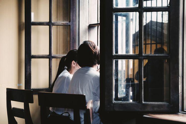 Window Adult