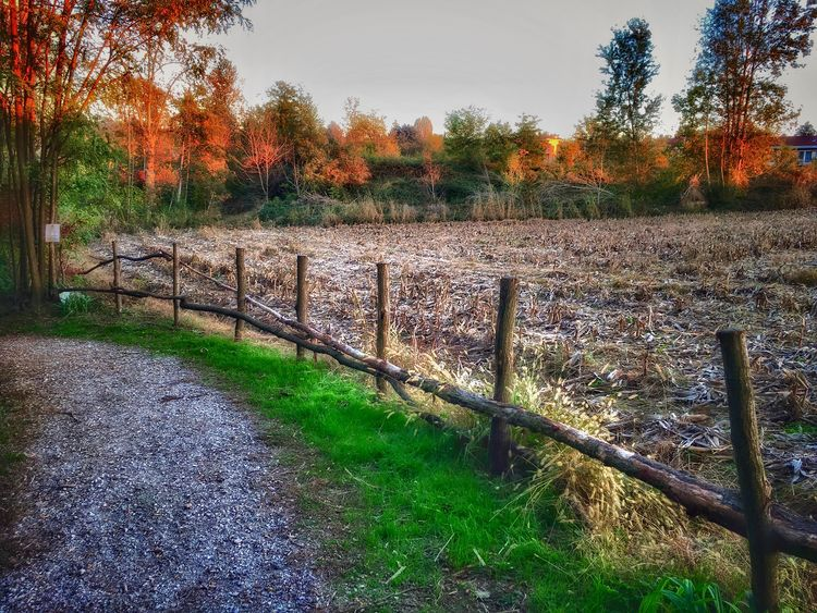 Countryside. Beauty In Nature Outdoors Rural Scene Tranquil Scene No People Field Autumn Scenics Landscape in Brianza