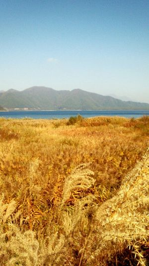 秋色の本栖湖 Motosuko Lake Cycling