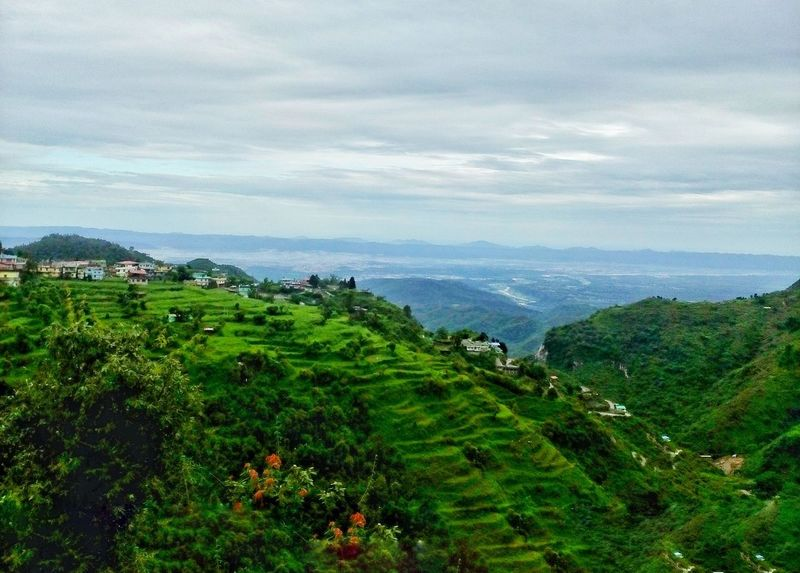 Step Farming in Musoorie Nature Beauty Mountain Outdoors Grass Landscape Scenics High Angle View Green Color India Through My Eyes Green 2017 8MP Motorolaphotography The Great Outdoors - 2017 EyeEm Awards Hello World Step Farming Vacations Musoorie India Hills Hanging Out Beauty In Nature The Week On EyeEm