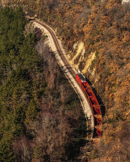 Red Color Train Woods Forest Photography Road High Angle View Tree Sunlight Landscape Mountain Road Rocky Mountains Land Vehicle Physical Geography Rock Formation Eroded Arid Landscape Vehicle Winding Road Rugged