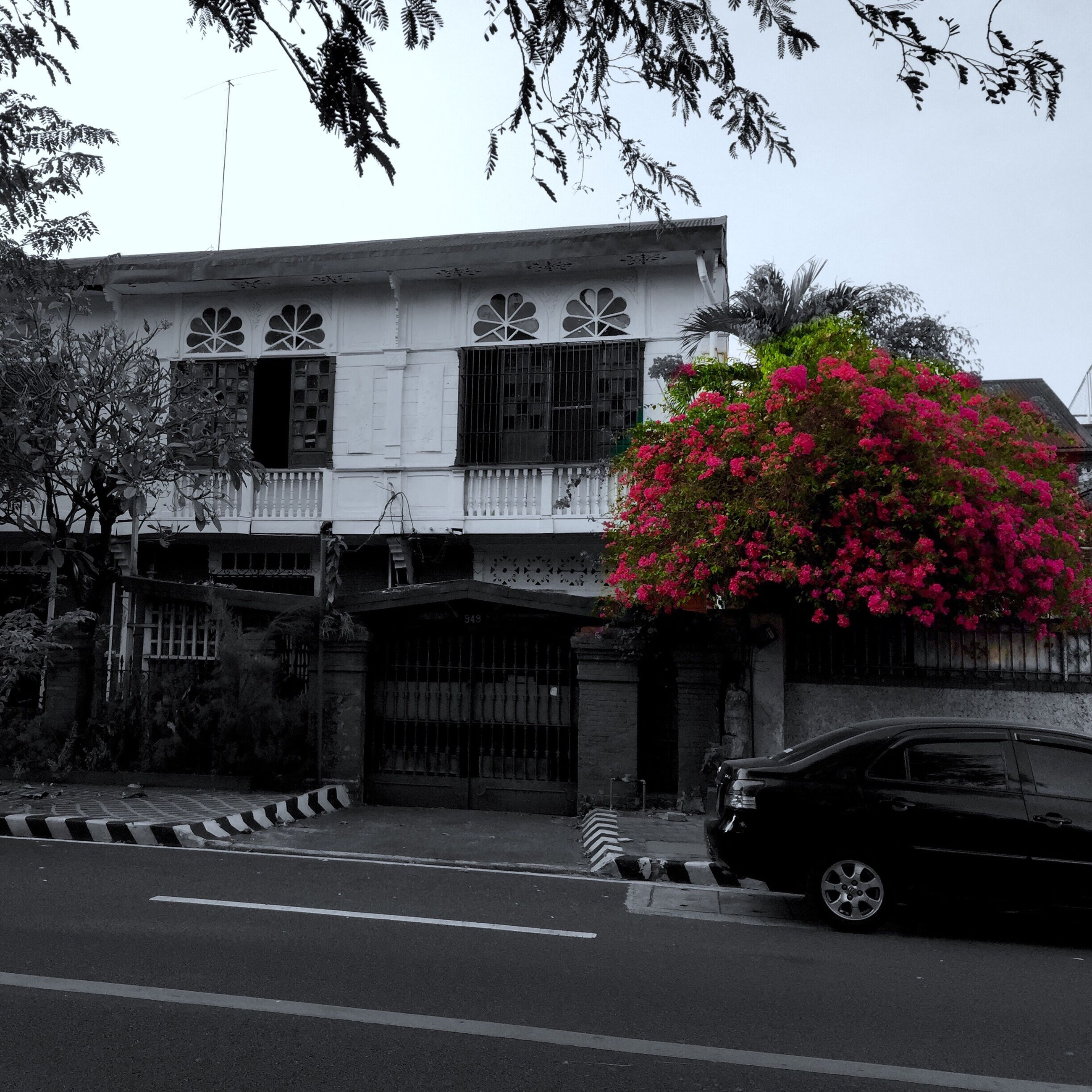 building exterior, architecture, built structure, transportation, clear sky, car, tree, land vehicle, road, street, mode of transport, flower, city, day, text, house, building, outdoors, residential structure, residential building
