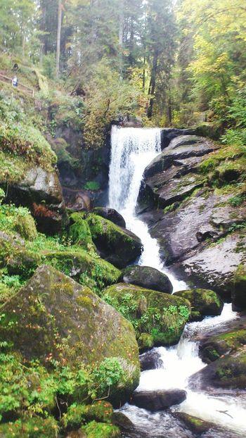 Waterfall Triberg Wasserfall *___*