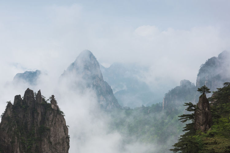 HighMountains Huangshan Natural Scenery Outdoors Overlook Pine Tree Seas Of Clouds Vast The Great Outdoors - 2017 EyeEm Awards The Great Outdoors - 2017 EyeEm Awards