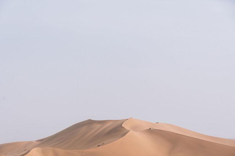 Desert Desert Beauty Nature Landscape Peaceful Desert Landscape Sand Sand Dune Minimalism