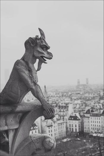 Low Angle View Of Gargoyle Statue Against Buildings In City