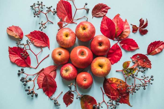 Apples and leaves background Autumn Autumn Colors Composition Food And Drink Immersion Annurca Apples Background Fall Flower Food Food And Drink Freshness Fruit Indoors  Leaf Leaves Light Blue Red Season  Sweet Food Texture Food Stories