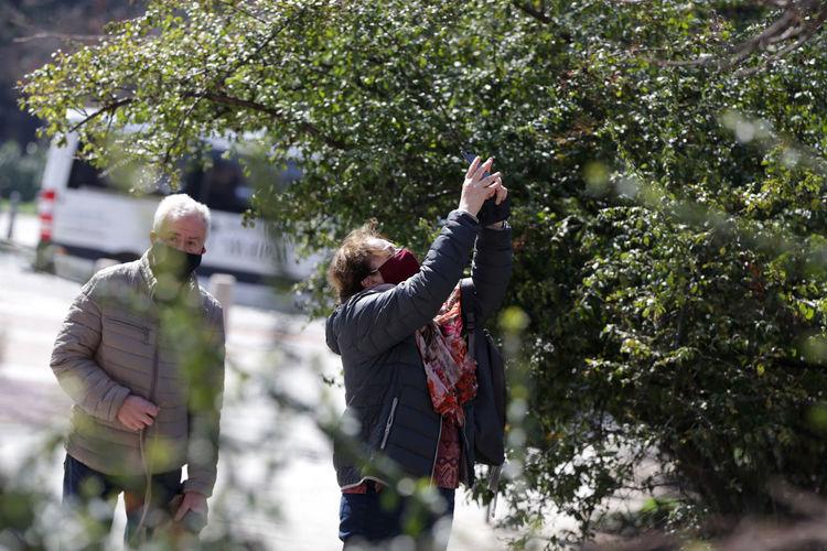 Rear view of people walking on plants