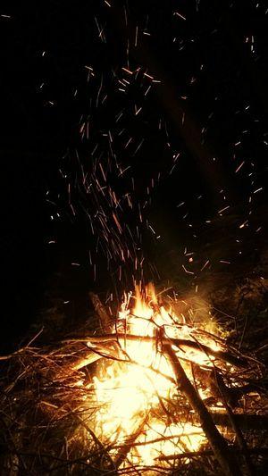 Canada February Firewood Nightscape FroidGlacial Bonfire