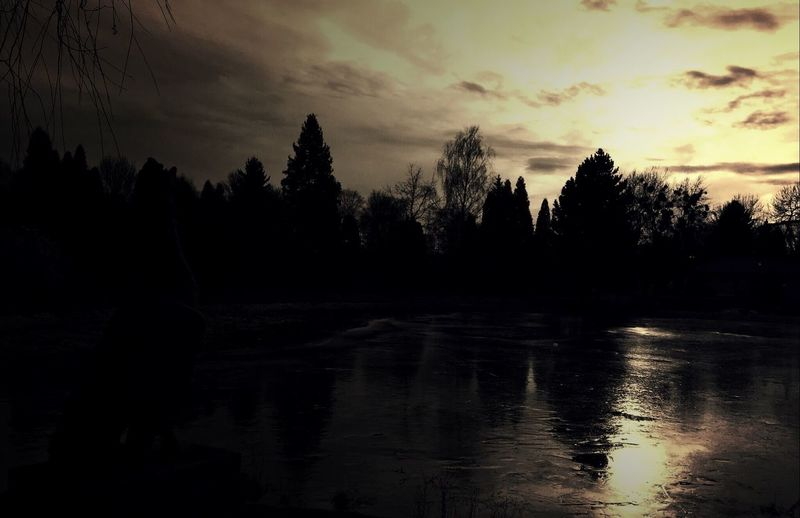 Silhouette Sun Light Light And Shadow Water Water Reflections Trees Nature EyeEm Best Shots EyeEm Nature Lover