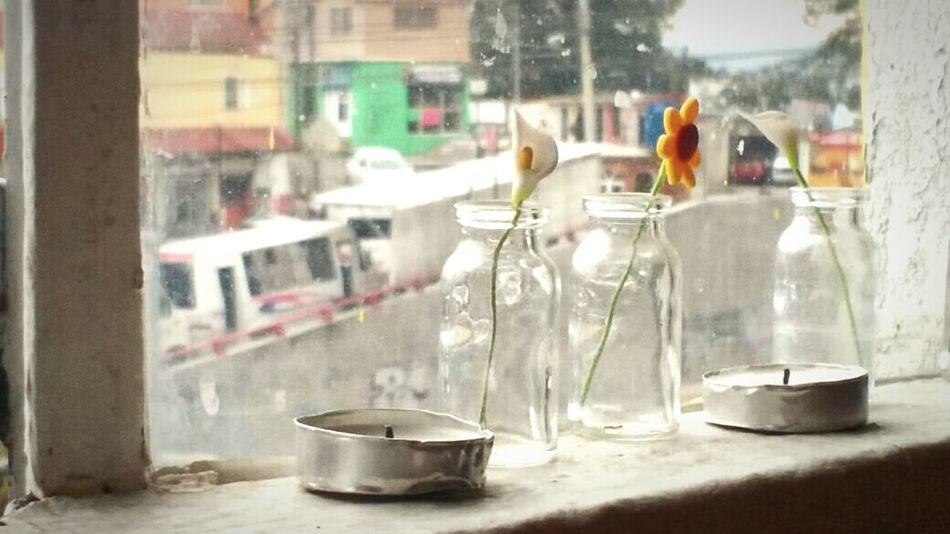 TardesPerfectas Mexicocolors Tardescaleñas
